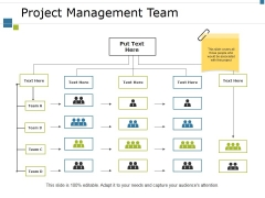 Project Management Team Ppt PowerPoint Presentation Professional Diagrams