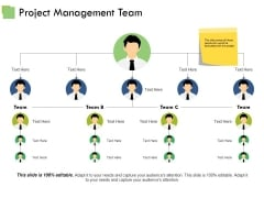 Project Management Team Ppt PowerPoint Presentation Professional Ideas