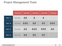 Project Management Team Ppt PowerPoint Presentation Show