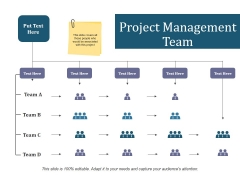Project Management Team Ppt PowerPoint Presentation Summary Graphics Example