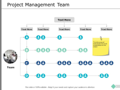 Project Management Team Ppt PowerPoint Presentation Summary Icon