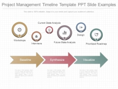 Project Management Timeline Template Ppt Slide Examples