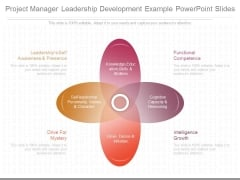 Project Manager Leadership Development Example Powerpoint Slides