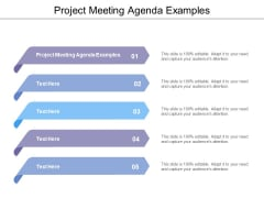 Project Meeting Agenda Examples Ppt Powerpoint Presentation Summary Layout Cpb