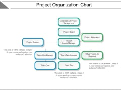 Project Organization Chart Ppt PowerPoint Presentation Summary Elements