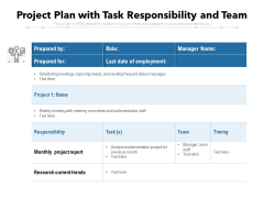 Project Plan With Task Responsibility And Team Ppt PowerPoint Presentation Show Skills PDF