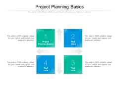 Project Planning Basics Ppt PowerPoint Presentation Model Shapes Cpb