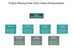 Project Planning Flow Chart Criteria And Assumptions Ppt PowerPoint Presentation Templates
