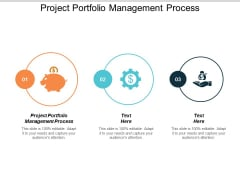 Project Portfolio Management Process Ppt PowerPoint Presentation Professional Layouts Cpb
