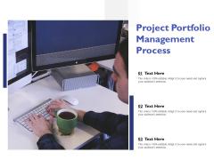 Project Portfolio Management Process Ppt PowerPoint Presentation Summary Images