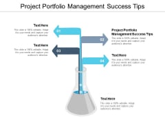 Project Portfolio Management Success Tips Ppt PowerPoint Presentation Layouts Picture Cpb Pdf