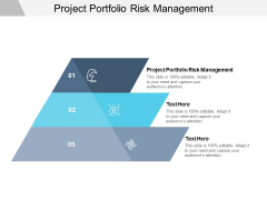 Project Portfolio Risk Management Ppt PowerPoint Presentation Gallery Styles Cpb