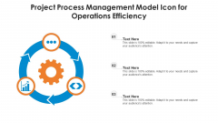 Project Process Management Model Icon For Operations Efficiency Ppt PowerPoint Presentation File Gridlines PDF