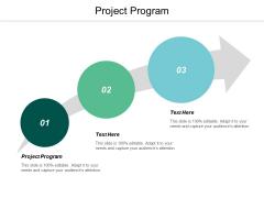 Project Program Ppt Powerpoint Presentation Portfolio Guide Cpb