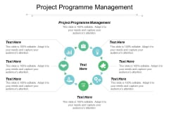 Project Programme Management Ppt PowerPoint Presentation Design Templates Cpb