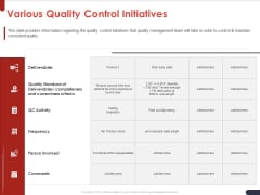 Project Quality Planning And Controlling Various Quality Control Initiatives Guidelines PDF