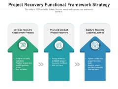 Project Recovery Functional Framework Strategy Ppt PowerPoint Presentation File Portfolio PDF