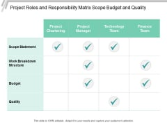 Project Roles And Responsibility Matrix Scope Budget And Quality Ppt Powerpoint Presentation Summary Structure