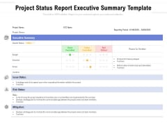 Project Status Report Executive Summary Template Ppt PowerPoint Presentation Gallery Good PDF