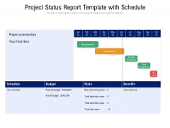 Project Status Report Template With Schedule Ppt PowerPoint Presentation Pictures Display PDF