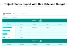 Project Status Report With Due Date And Budget Ppt PowerPoint Presentation Layouts Gallery PDF