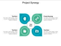 Project Synergy Ppt PowerPoint Presentation Icon Examples Cpb