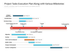 Project Tasks Execution Plan Along With Various Milestones Ppt PowerPoint Presentation Gallery Graphic Images PDF