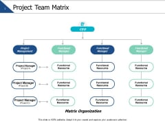 Project Team Matrix Ppt PowerPoint Presentation Styles Design Inspiration