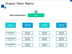 Project Team Matrix Ppt PowerPoint Presentation Visual Aids Backgrounds