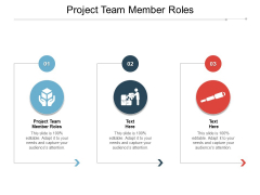 Project Team Member Roles Ppt PowerPoint Presentation Pictures Design Templates