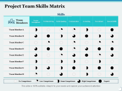 Project Team Skills Matrix Ppt PowerPoint Presentation Infographic Template Graphics Design