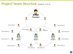 Project Team Structure Ppt PowerPoint Presentation Layouts Background