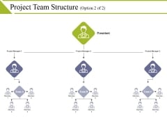 Project Team Structure Template 2 Ppt PowerPoint Presentation Infographic Template Themes