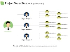 Project Team Structure Template Ppt PowerPoint Presentation Professional Vector