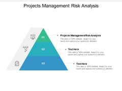 Projects Management Risk Analysis Ppt PowerPoint Presentation Infographic Template Slides Cpb