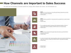Promotional Channels And Action Plan For Increasing Revenues How Channels Are Important To Sales Success Introduction PDF