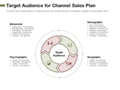 Promotional Channels And Action Plan For Increasing Revenues Target Audience For Channel Sales Plan Professional PDF