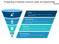 Prospecting A Potential Customer Leads And Opportunities Ppt PowerPoint Presentation Show Examples