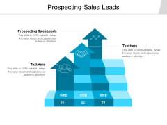 Prospecting Sales Leads Ppt PowerPoint Presentation Styles Templates Cpb
