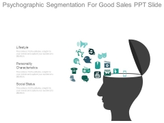 Psychographic Segmentation For Good Sales Ppt Slide