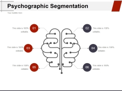 Psychographic Segmentation Ppt PowerPoint Presentation Icon Graphics Pictures