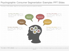 Psychographie Consumer Segmentation Exemples Ppt Slides
