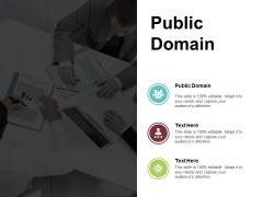 Public Domain Ppt PowerPoint Presentation Portfolio Example Introduction Cpb