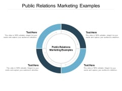 Public Relations Marketing Examples Ppt PowerPoint Presentation Ideas Smartart