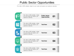 Public Sector Opportunities Ppt PowerPoint Presentation Styles Tips Cpb Pdf