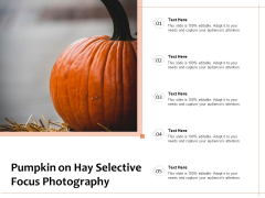 Pumpkin On Hay Selective Focus Photography Ppt PowerPoint Presentation File Gallery PDF
