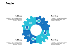 Puzzle Problem Ppt PowerPoint Presentation Gallery Portrait