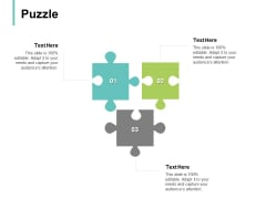 Puzzle Problem Solution Ppt PowerPoint Presentation File Example