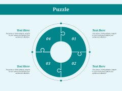 Puzzle Problem Solution Ppt PowerPoint Presentation Show Samples