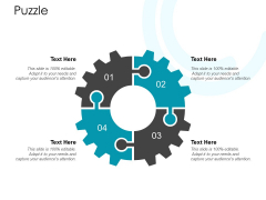 Puzzle Solution Ppt PowerPoint Presentation Icon File Formats